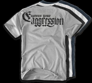 da_t_expressaggression-ts16.png